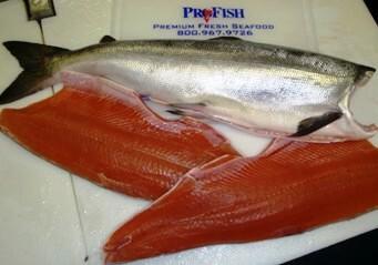 Salmon King Fillet Wild