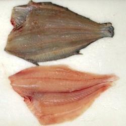 Flounder, Fillet, Hand Cut